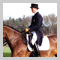 Andrew Gould Dressage Rider
