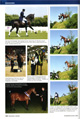 Equestrian Lifestyle October 08